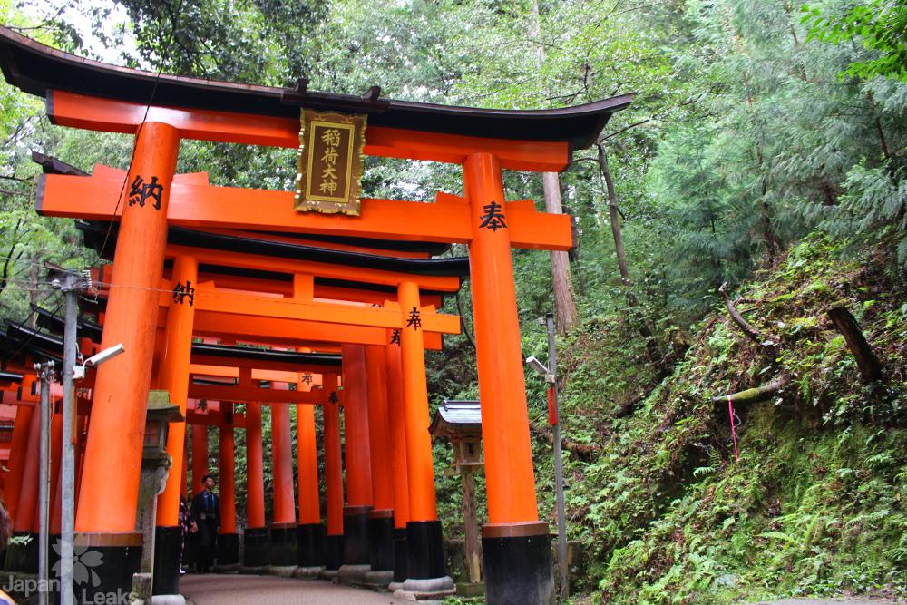 Torii am Fushimi Inari Schrein am Berghein.