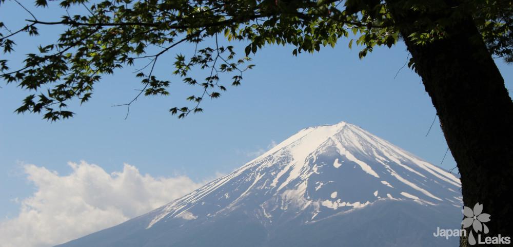 Ein Bild des Fujis.