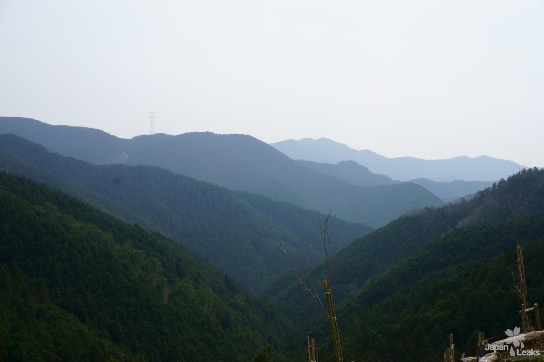 Aussicht auf die Wälder von den Bergrücken bei Yoshinoyama.