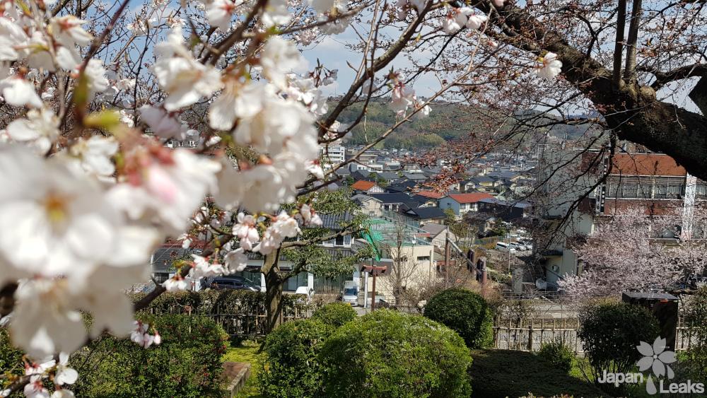 Blick vom Kenrokuen aus auf den Stadtbereich in Kanazawa.