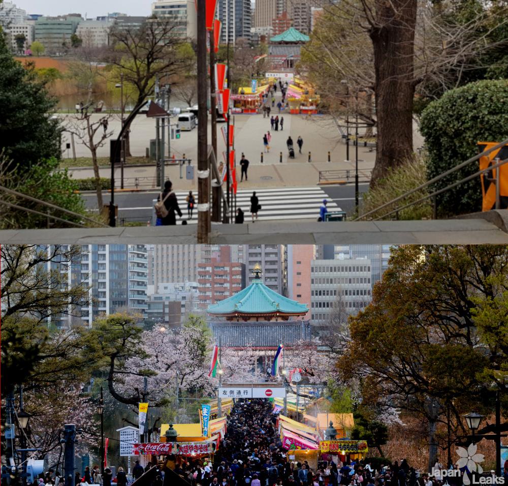 Foto des Tempels Shinobazunoike Bentendo im Ueno Park.
