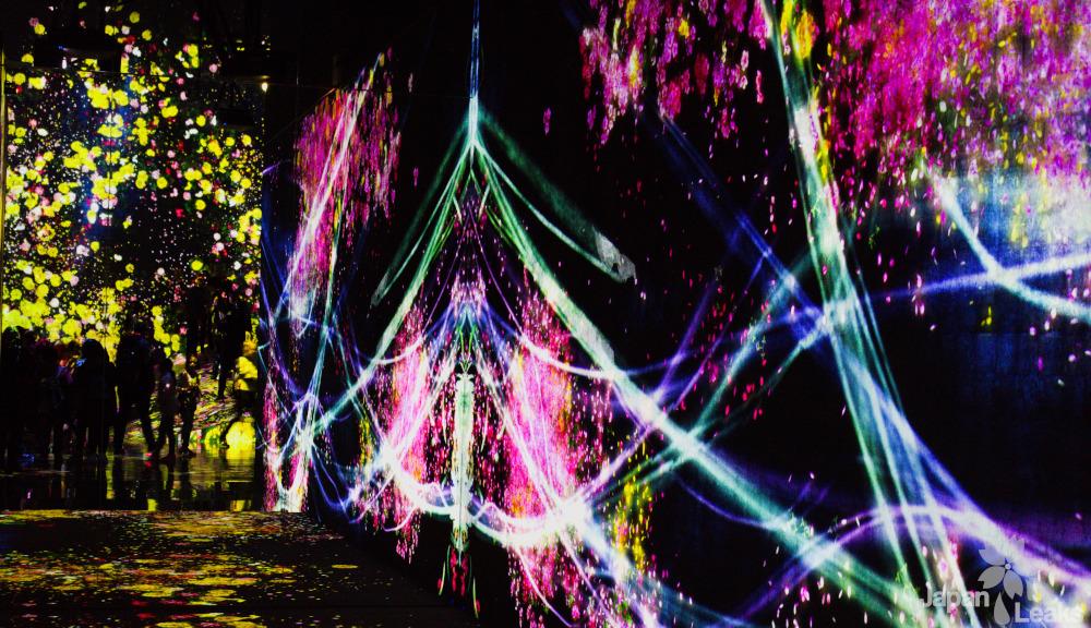 Projektion im Teamlab Borderless Kunstmuseum