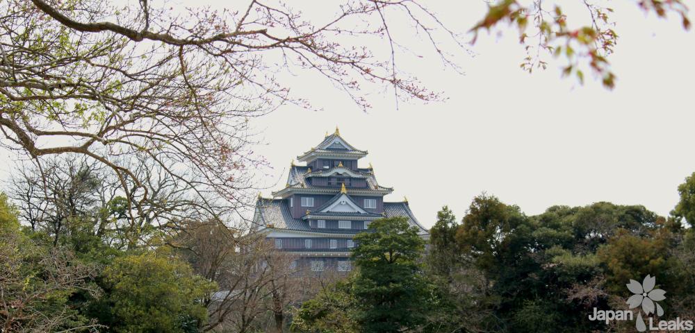 Foto der Burg Okayama mit ein paar Bäumen im Vordergrund.
