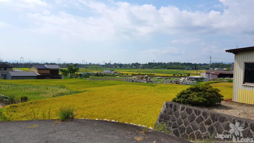 Reisfelder mit einigen Häusern in Ōmi-Maiko