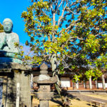 Foto der Buddha Statue am Tennoji Tempel.